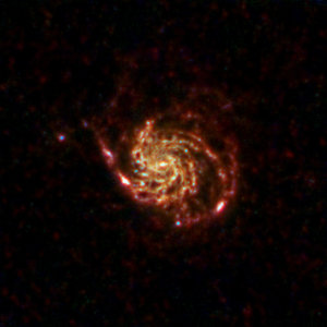 Herschel's view of the Pinwheel Galaxy