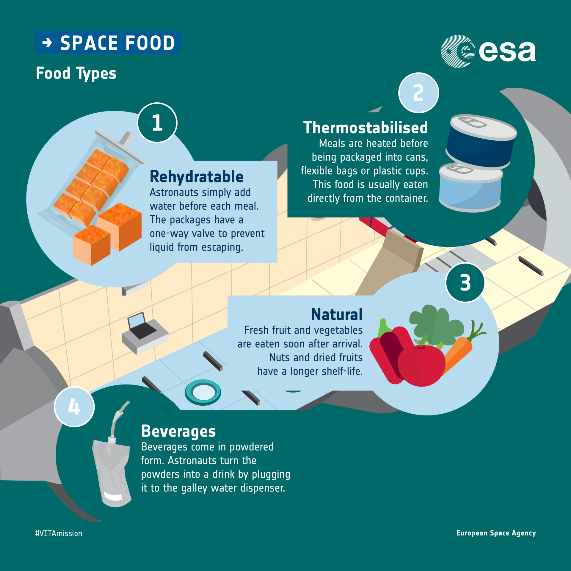 Types of food in space: infographic