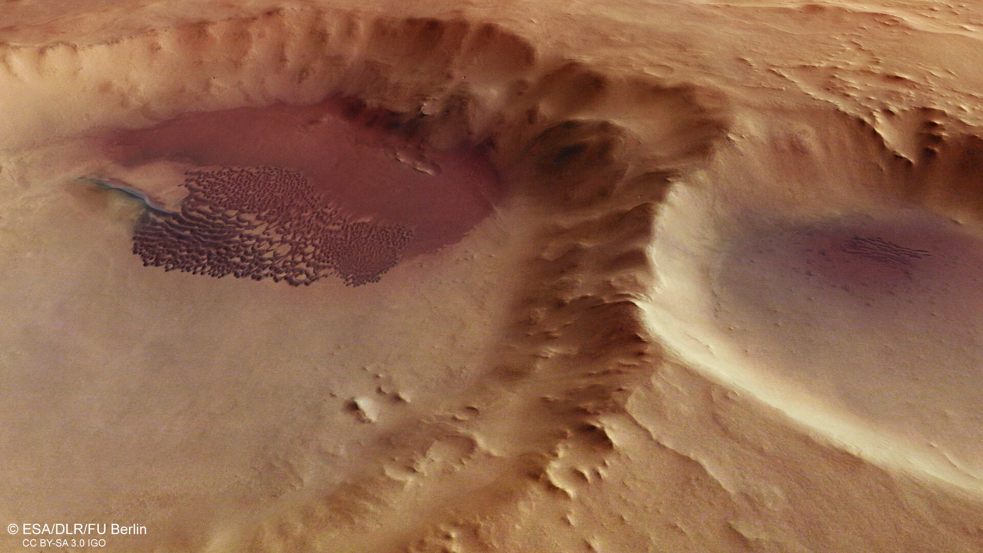 Dune field in a crater, perspective view