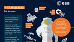 [35/47] Out in space: Spacewalk infographic