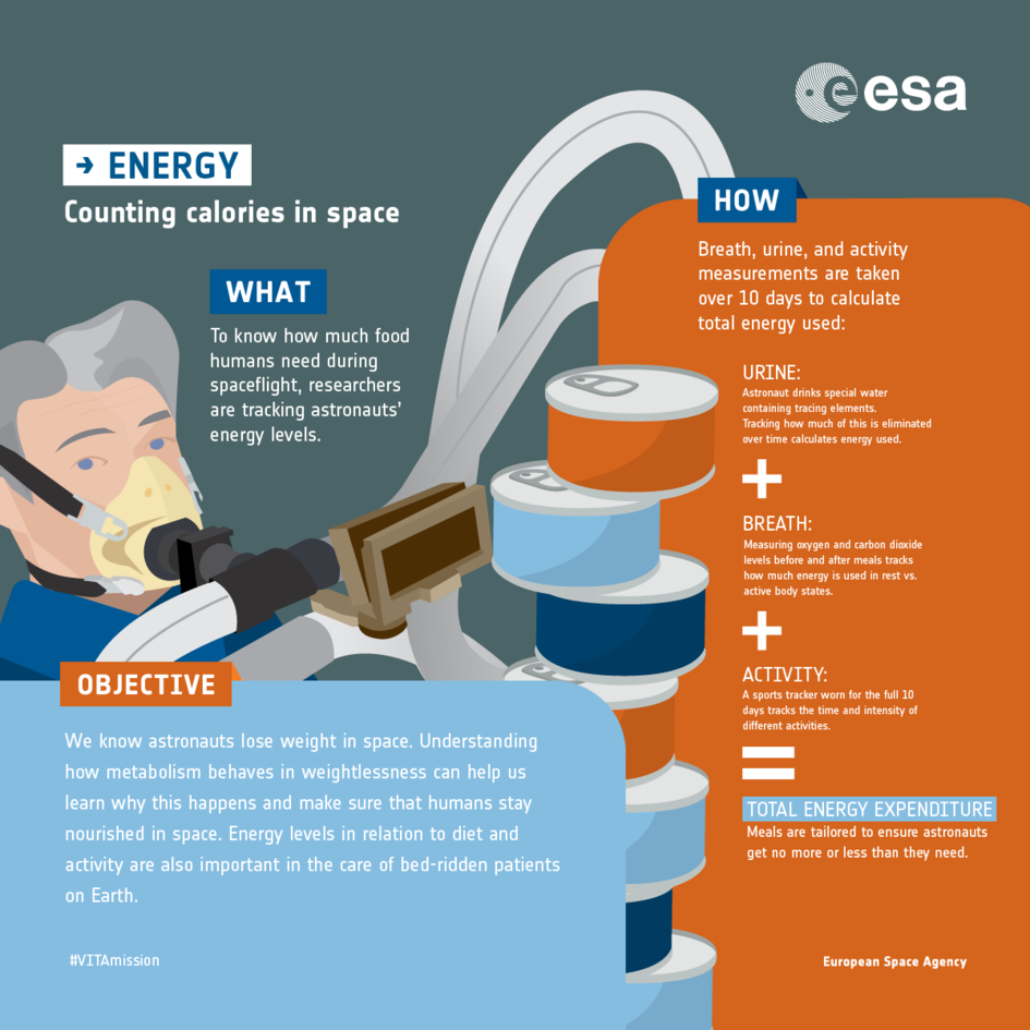Energy experiment: infographic