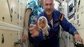 Beginn der 2. ISS-Mission von Alexander Gerst