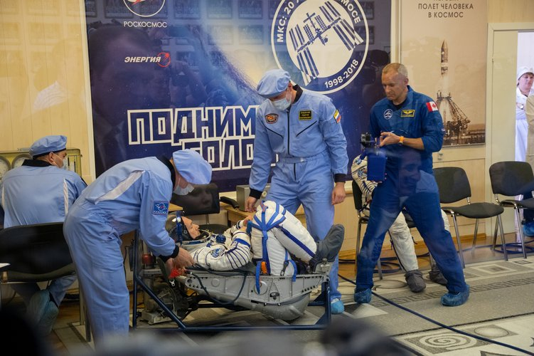 Sokol suit checks