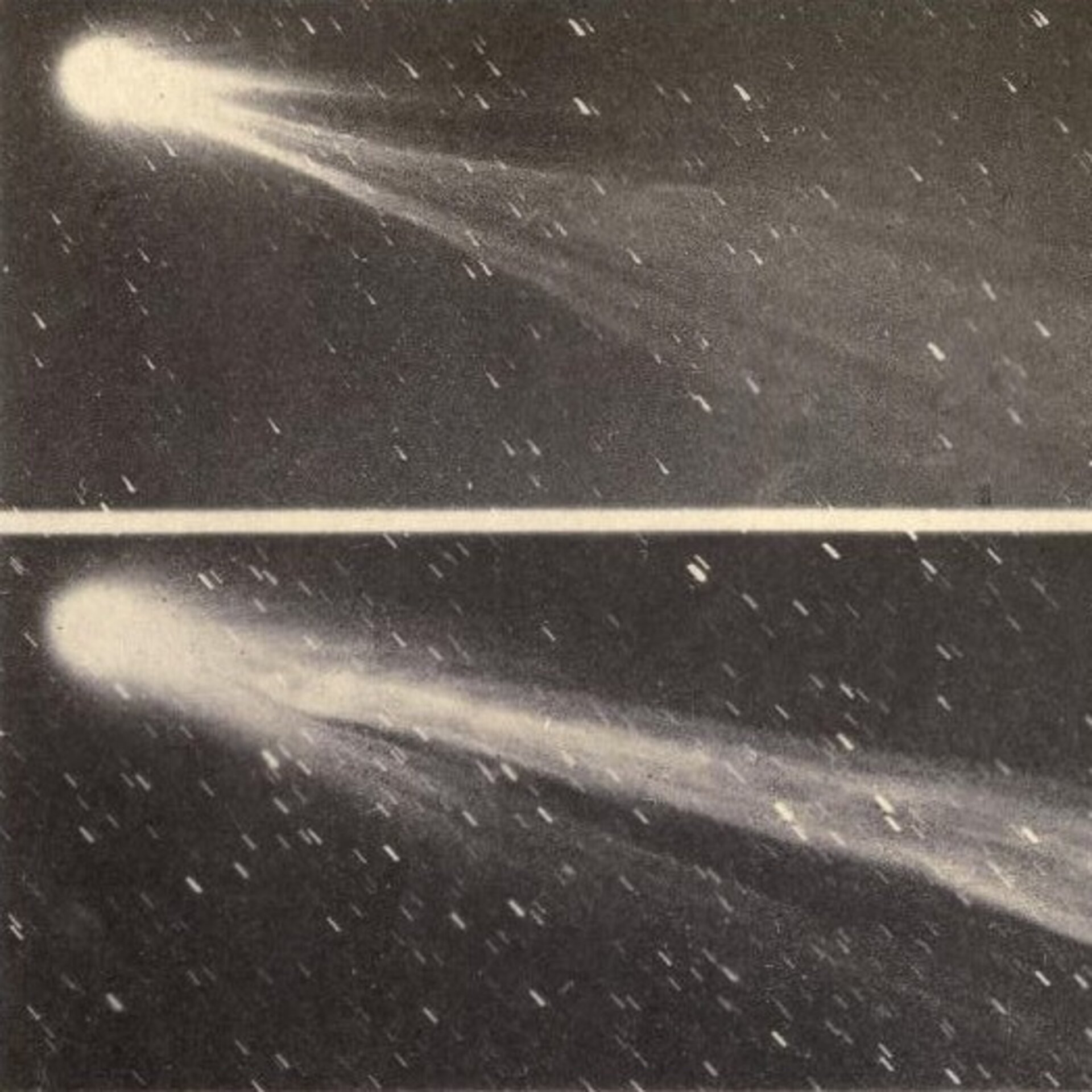 The cautionary tail of Comet Swift–Tuttle