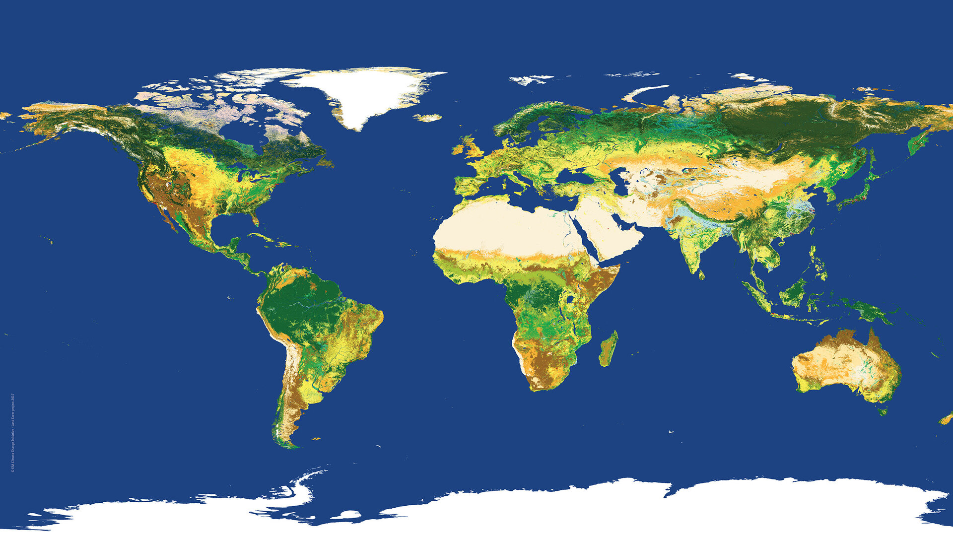 2015 global land cover map