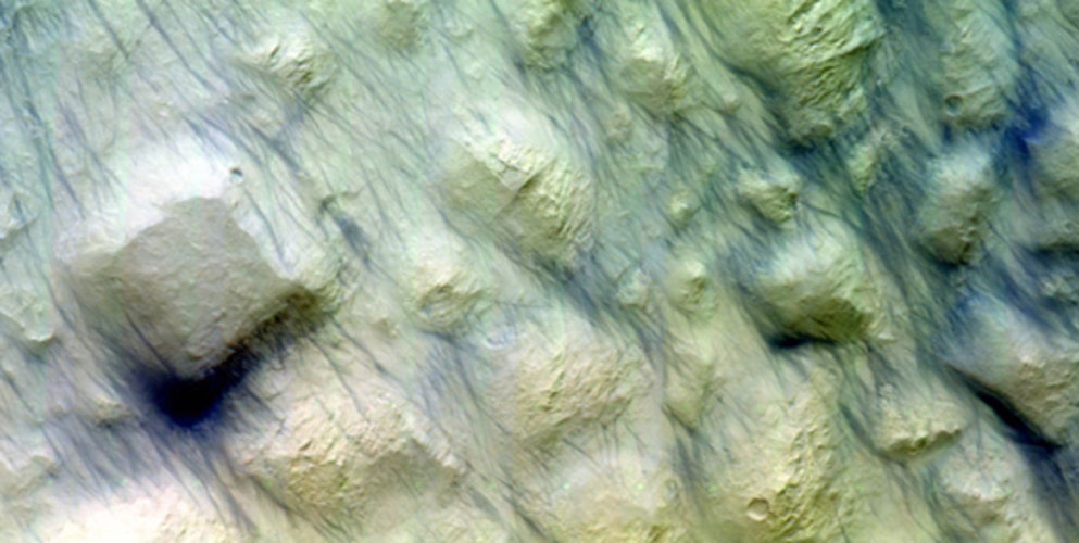Dust devil tracks on Mars