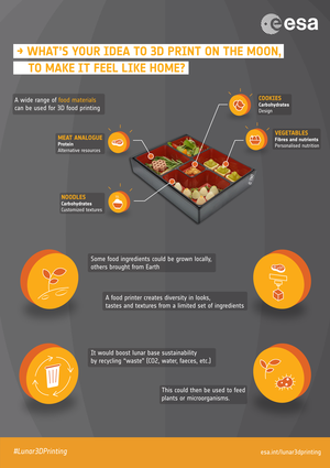 Infographic: lunar 3D printing – from food to...?