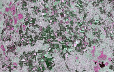Crop mapping in Estonia