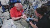 Das erste 8K Video aus dem Weltraum