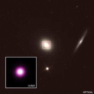 El agujero negro se traga una galaxia.