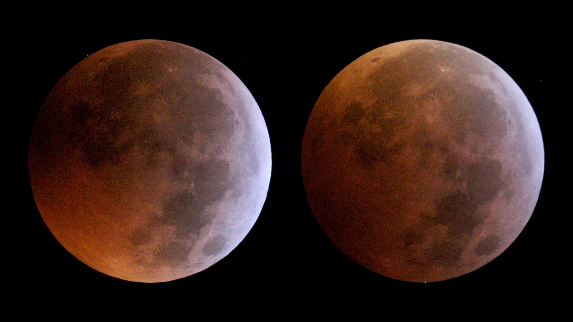 Stellar occultations during the lunar eclipse
