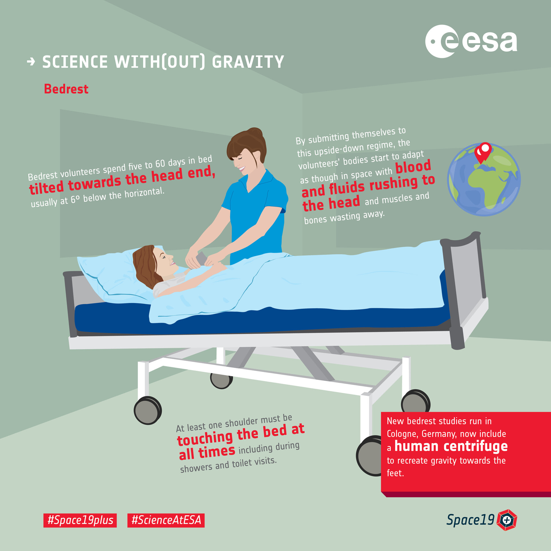 Science with(out) gravity  – bedrest
