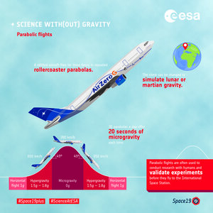 Science with(out) gravity  – parabolic flights