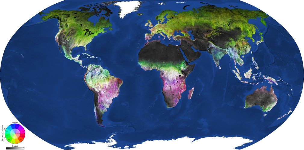 Global map of land-cover dynamics