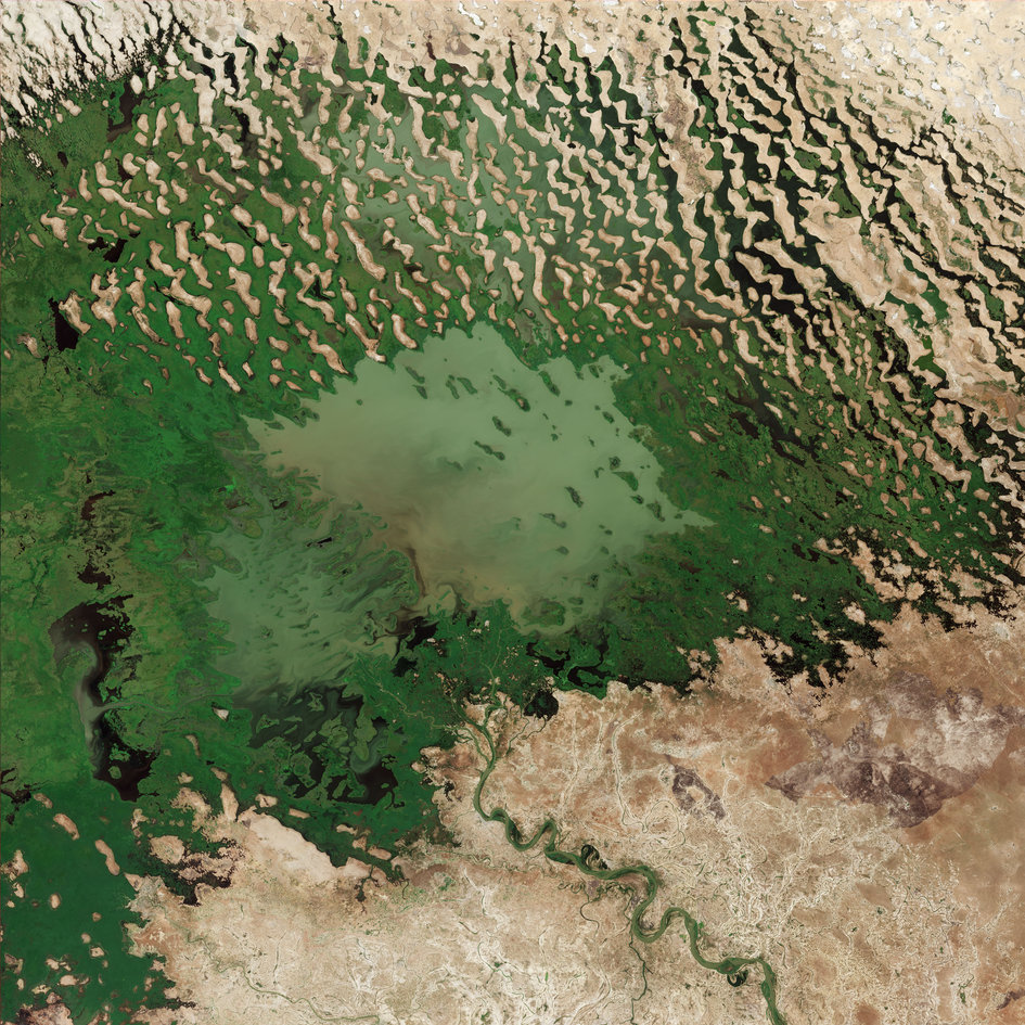 Lake Chad's shrinking waters