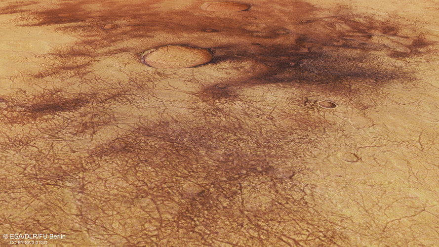 Perspective view of the dust devils of Chalcoporos Rupes