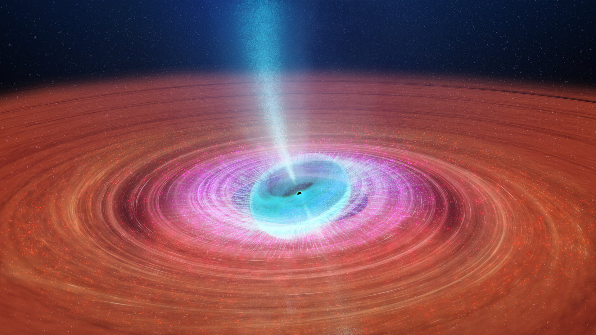 Tilted black hole accretion disc