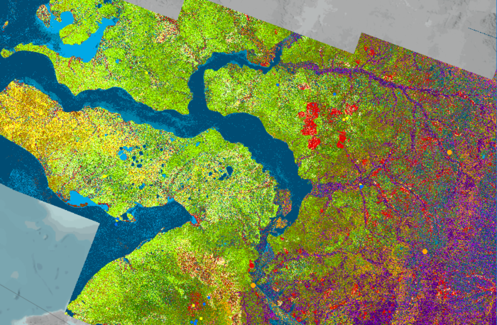 Space in Images - 2019 - 05 - Arctic land cover