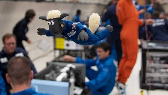 Shaun the Sheep experiencing microgravity on ESA parabolic flight