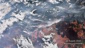 Fires ravage the Amazon