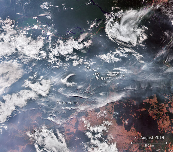 Wildfires in Brazil