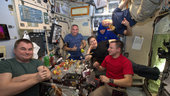 Space Station science: learning from Luca