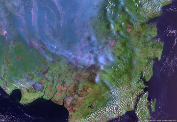 Proba-V images smoke plumes from Borneo