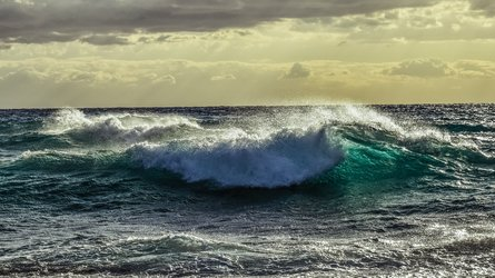 Sea roughness key to carbon flux