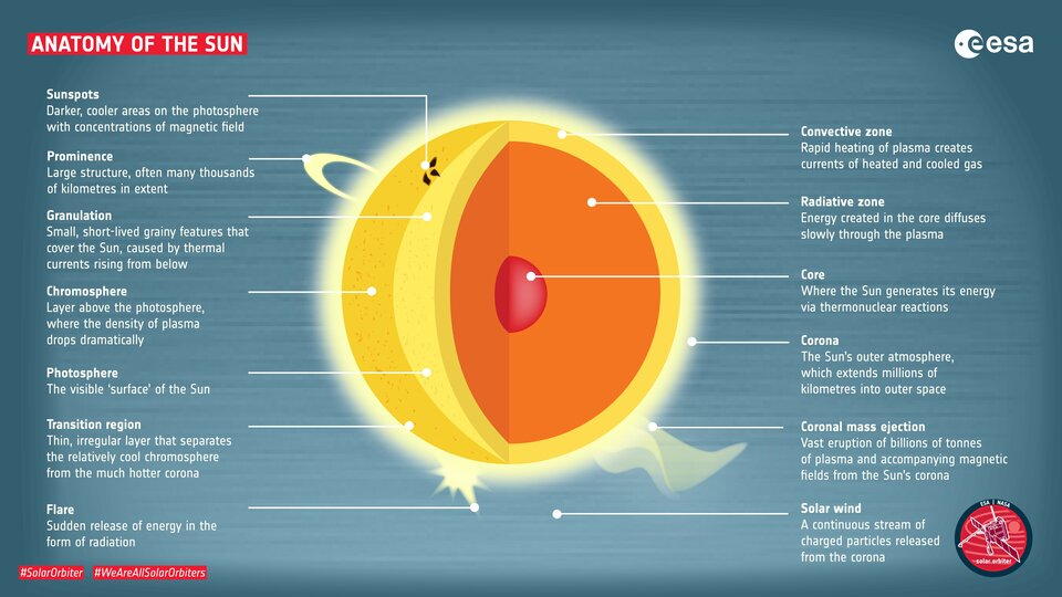 Anatomy of the Sun