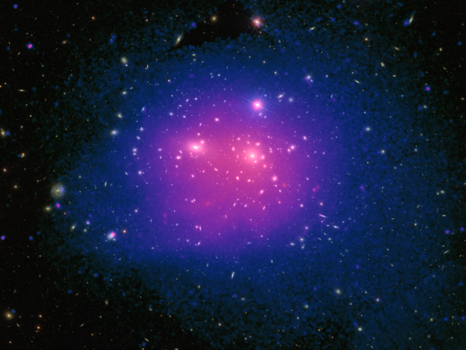 X-ray and optical view of the Coma galaxy cluster