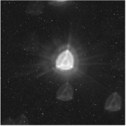 Cheops image of star HD 88111