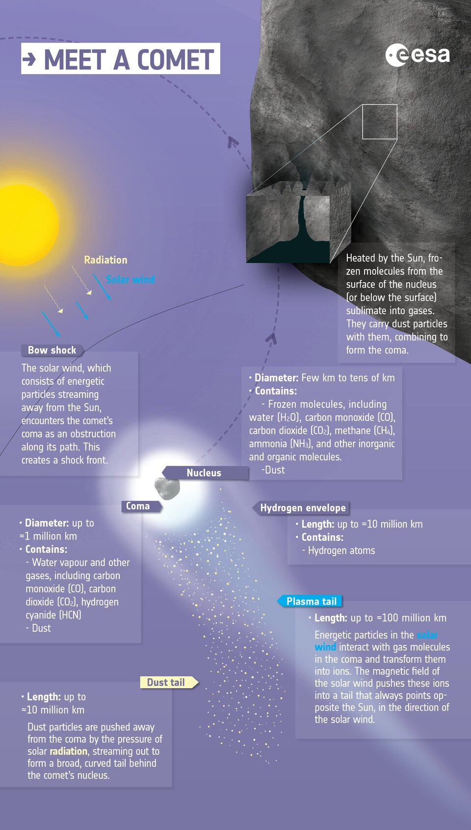 Anatomy of a comet: infographic
