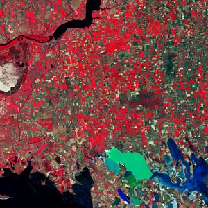 Southern Ukraine is featured in this false-colour image captured by the Copernicus Sentinel-2 mission.