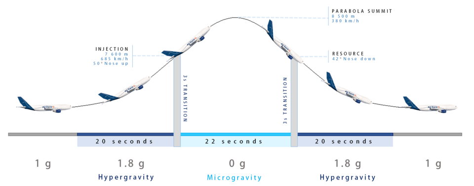 The different gravity phases during a parabola