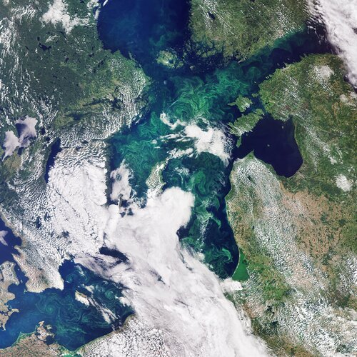 This image, captured by the Copernicus Sentinel-3 mission, takes us over the green algae blooms swirling around the Baltic Sea.