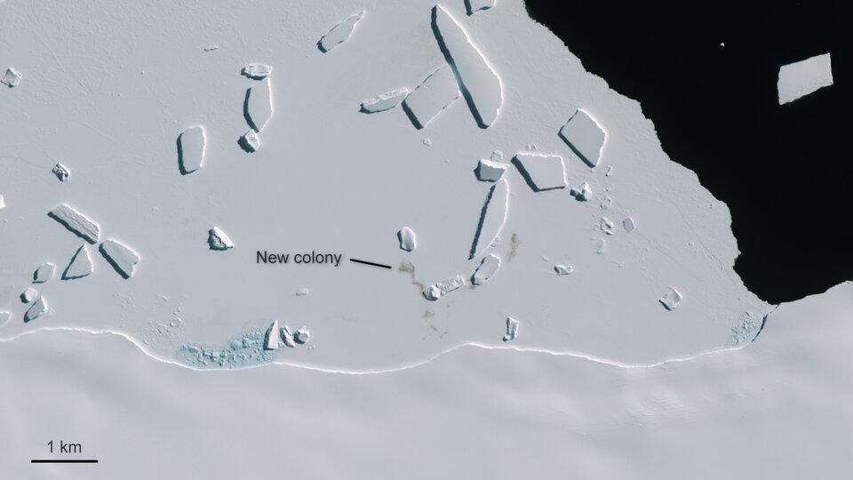 Cape Gates, Antártida