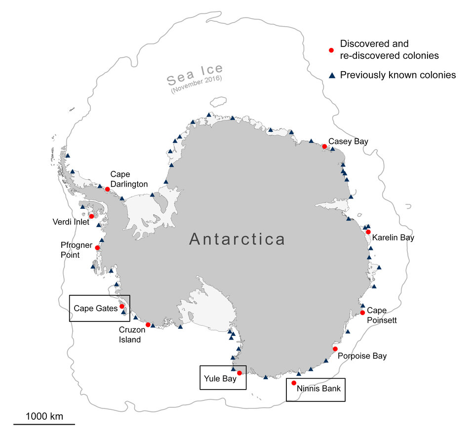 Locations of penguin colonies