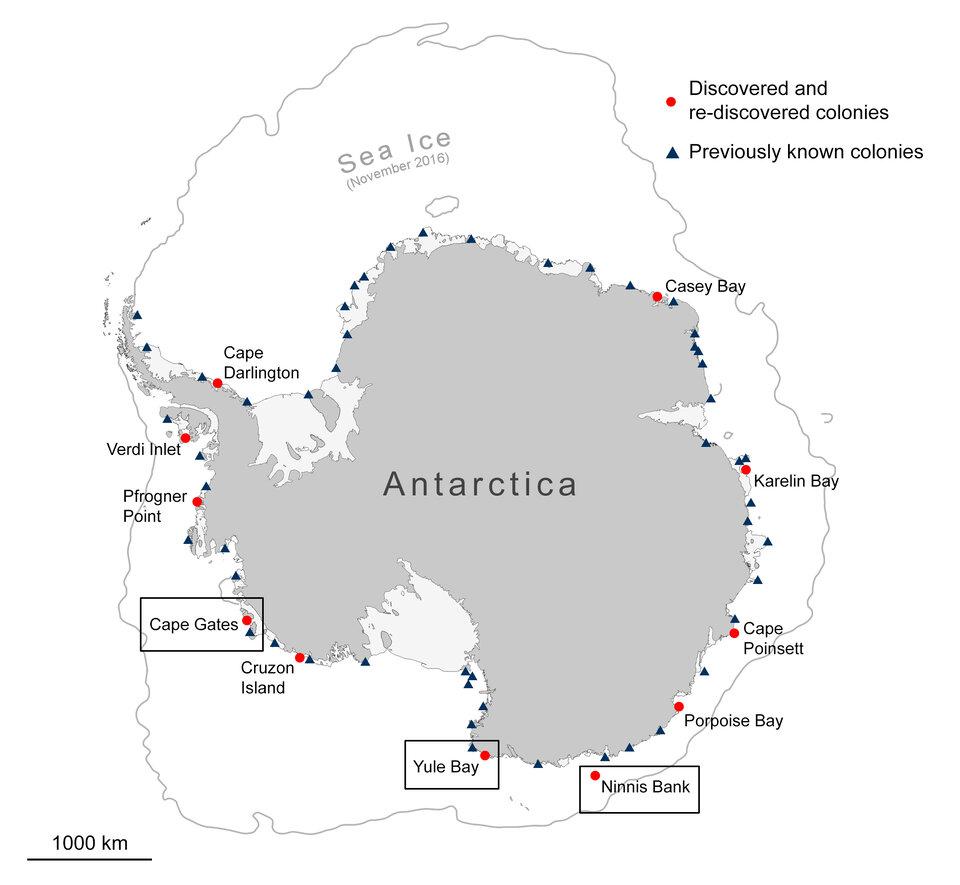Ubicaciones de colonias de pingüinos