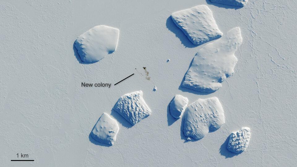 Ninnis Bank, Antártida (haga clic en la imagen para ampliarla)