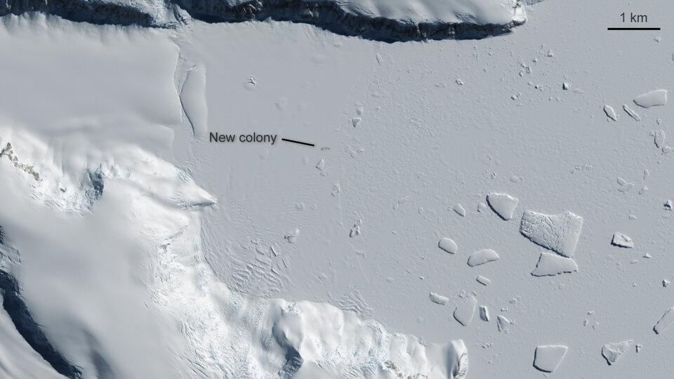 Bahía Yule, Antártida