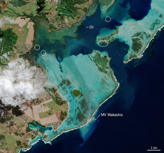 Ölkatastrophe vor Mauritius