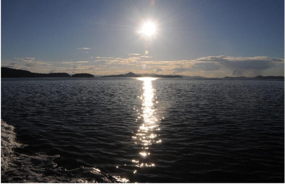 Sun glint over the ocean