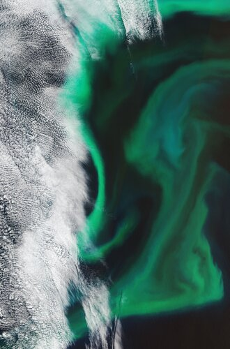 The Copernicus Sentinel-2 mission takes us over the algal blooms swirling around the Pacific Ocean, just off the coast of Japan.