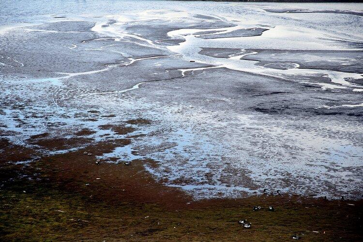 Polar Arctic
