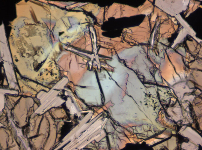 Thin Section Photograph of Apollo 11 Sample 10003,153 in Plane-Polarized Light