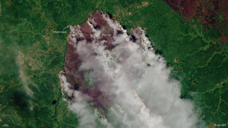 Forest fires close to the Arctic Circle