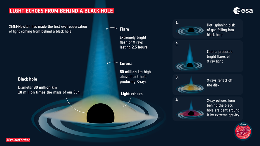 XMM-Newton sees light echo from behind a black hole